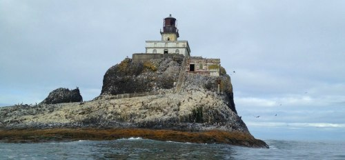 tillamookrocklighthouse_mid-res_mini