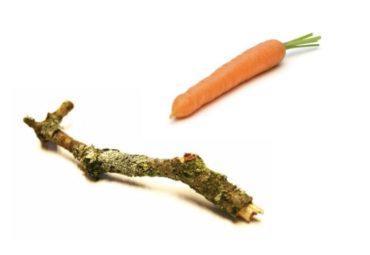 carrotstick-e1549804906324